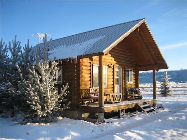 Darby Cabin Driggs Teton County