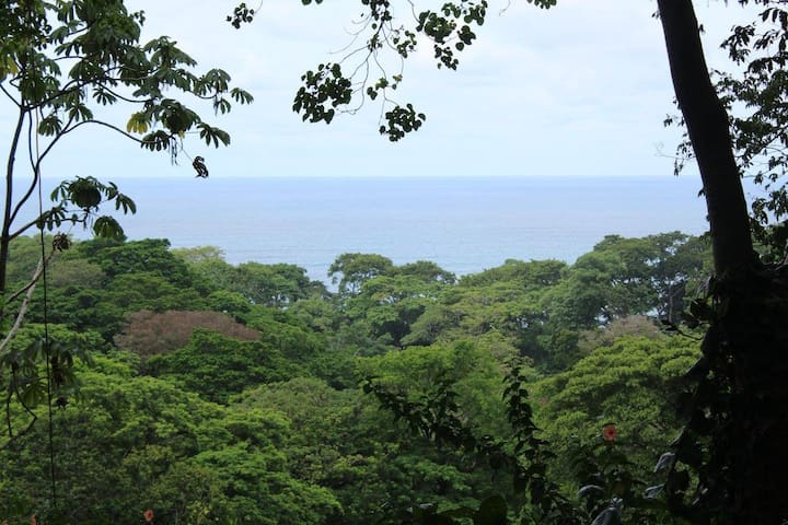 NATURE LOVERS PARADISE! CASA DE CIELO - Puerto Viejo de Talamanca - Ház