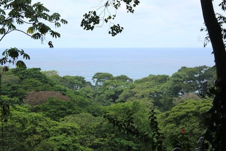 NATURE LOVERS PARADISE! CASA DE CIELO - Puerto Viejo de Talamanca - 独立屋