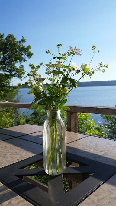 wild flowers hand picked over looking the lake