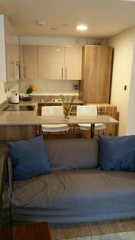 Brand new stunning one bedroom apartment - Croydon - Apartment