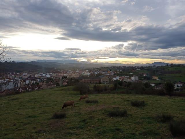 Habitación Asturias