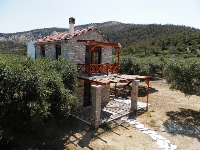Elea New stone house (3) in bio quiet olive grove