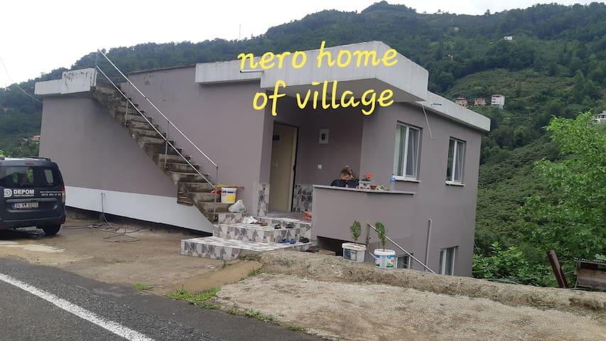 Yemyeşil doğasıyla köy  evi  manzarası yeter