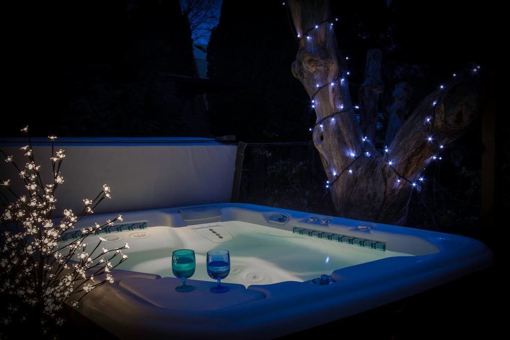 Enjoy the hot springs spa in the back yard.