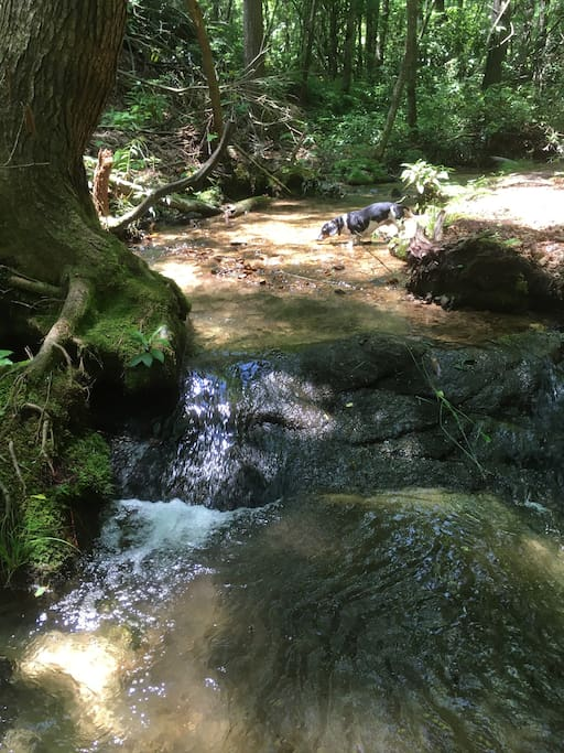 I am so in love with this creek!!!!