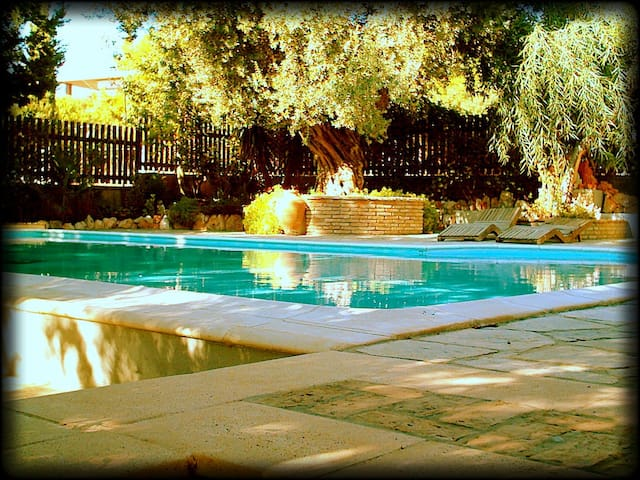 'Villa Eleni' Unforgettable holidays near Sounio - Thimari - Casa