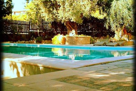 'Villa Eleni' Unforgettable holidays near Sounio - Thimari - Ev