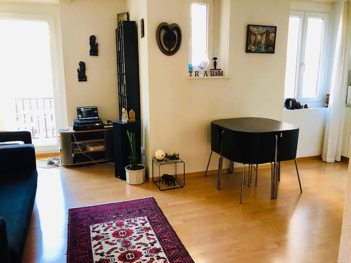 Cozy apartment in the heart of Zürich city!