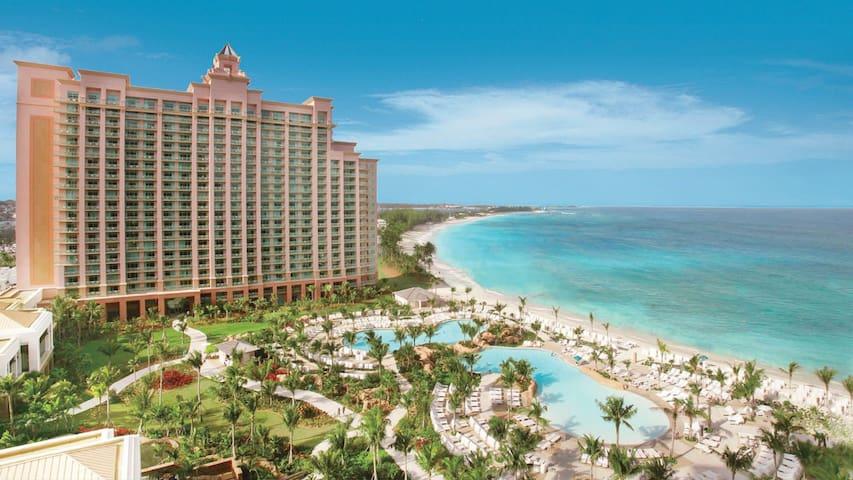 Atlantis, Bahamas, Ocean View Studio