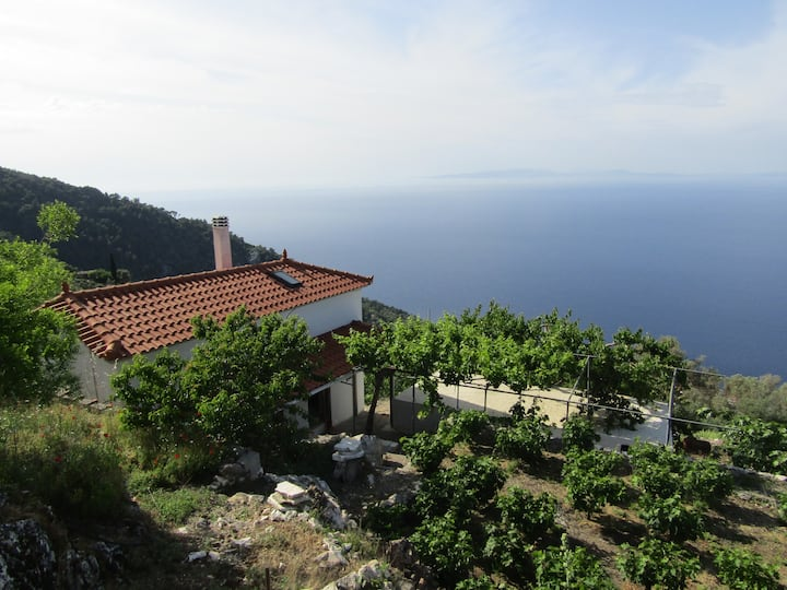 Ampelos house with seaview