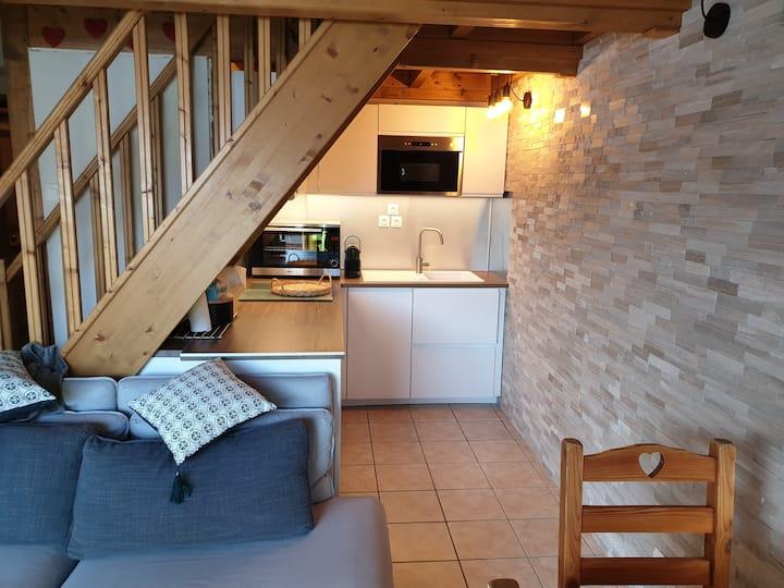 Appt 2 Chambres+Mezzanine+balcon+garage Vue pistes