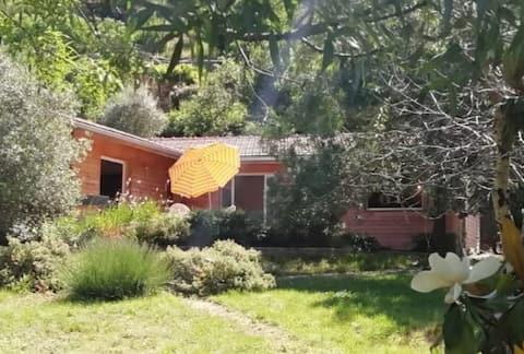 Maison d'architecte - terrasse et jardin arboré