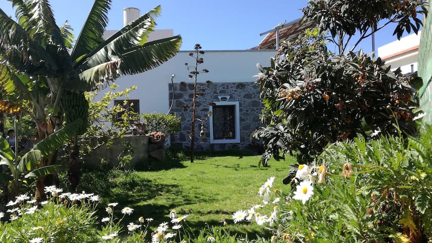 Traditional Villa Canaria with garden and trees - Farailaga - Villa