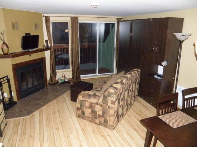 Salon et murphys bed (Foyer non fonctionnel)