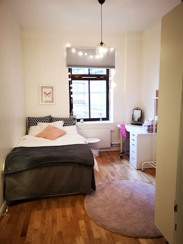 Room in central Malmo near the Triangeln station