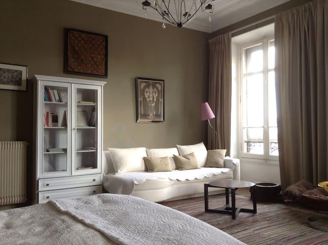 Chambre 2 - 1 lit de 160 et 1 canapé lit