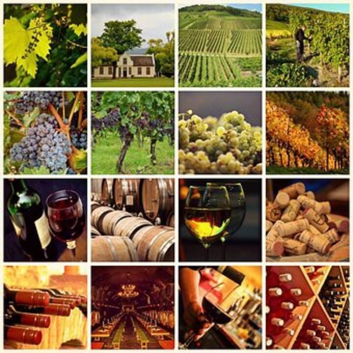 Grand gîte 8 à 10 p au cœur de la Bourgogne