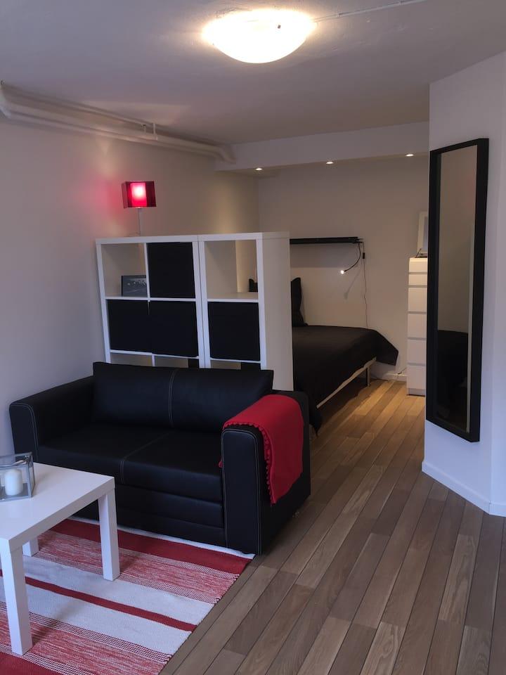 Nice studio apartment in villa area