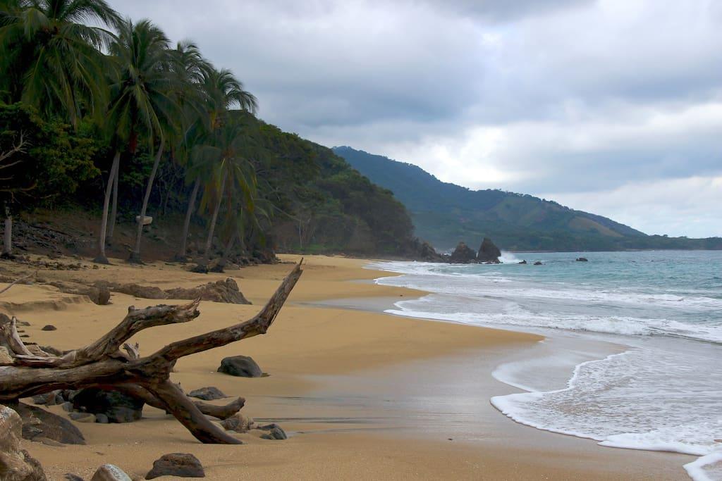 our long beach
