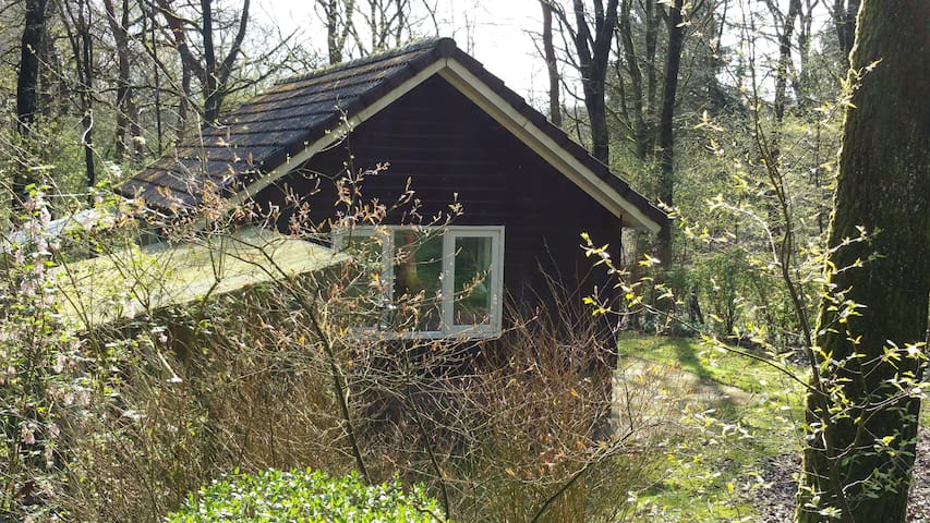 Slapen in het Drentse bos..! - Uffelte - บ้าน