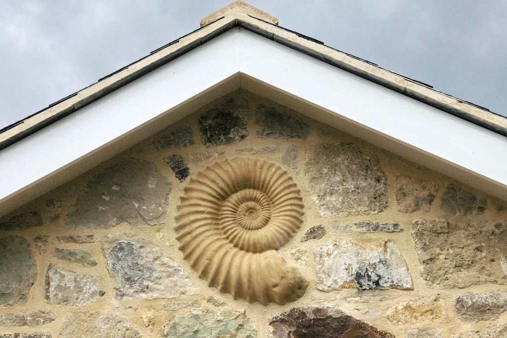 Fossil in the stonework