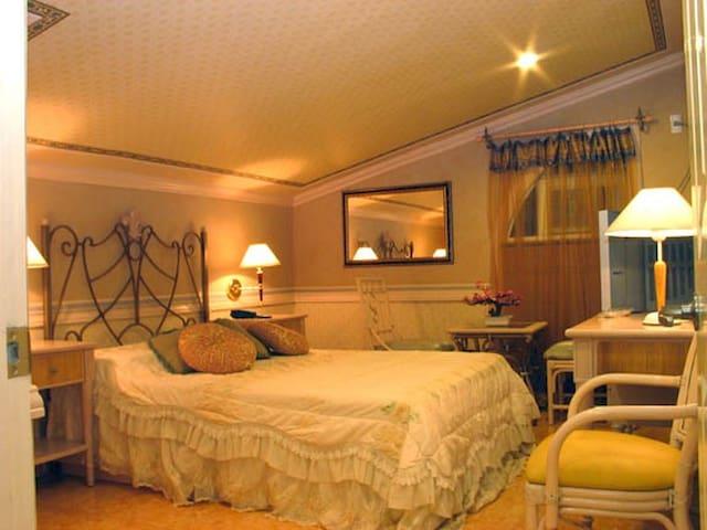 Europa Mansionette Inn cozy getaway