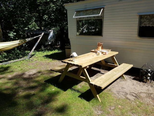 Stacaravan op camping Bakkum - Castricum - Wohnung