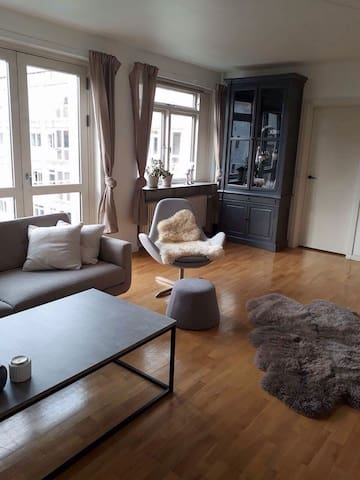 Nice and big apartment in the heart of Copenhagen