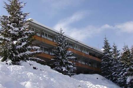 Appartamento sulle piste da sci - Mezzana - 公寓
