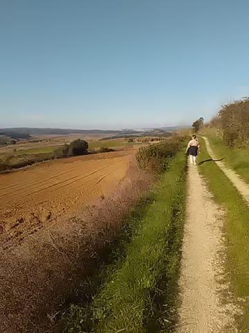 Passeios a pé ou bicicleta - Marcher ou faire du vélo