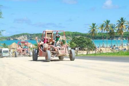 Punta cana macao boogies - El salado