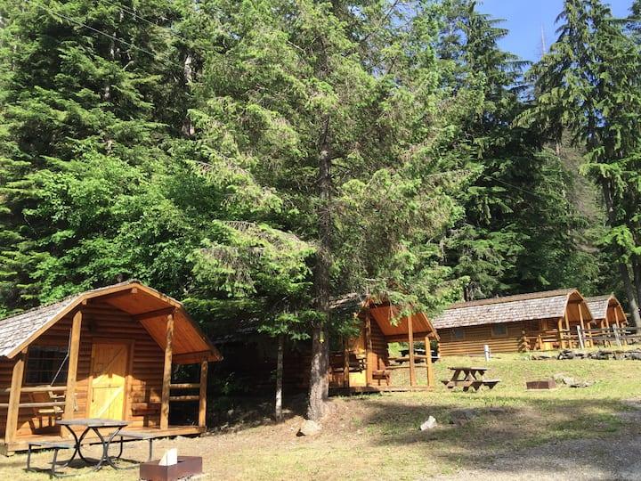 Cozy Rustic Cabin #111~ Sunny Sunday Funday