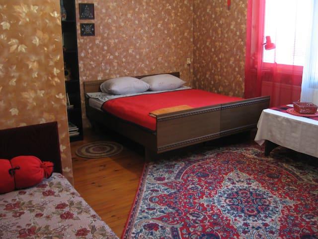 Усадьба «На Заречной улице» (Красная комната)