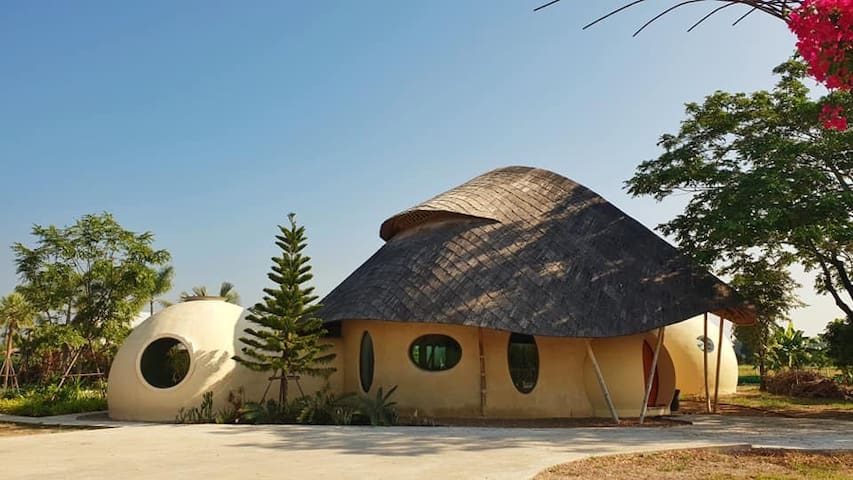 Stunning Bamboo Dome Home