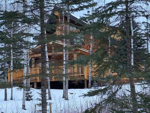 Luxury modern log cabin