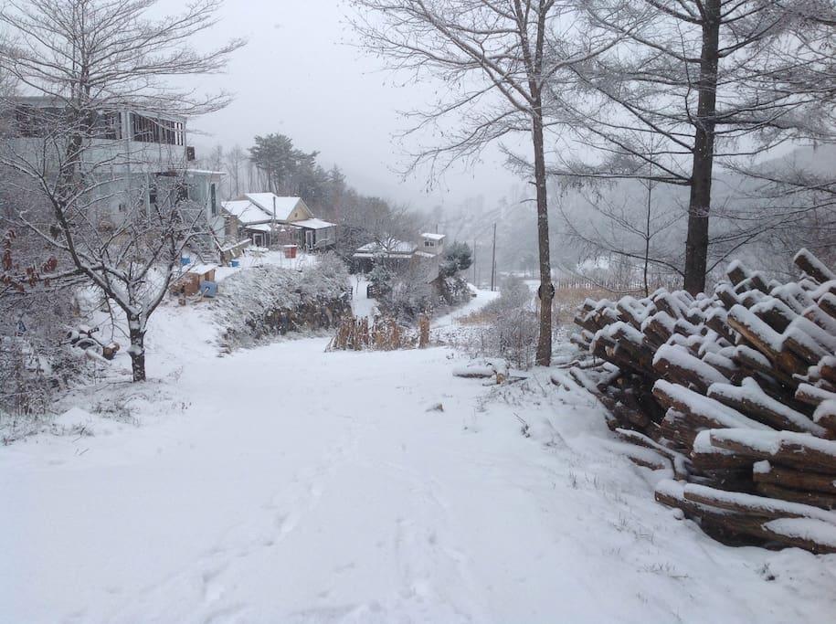 눈 쌓인 집 앞 풍경
