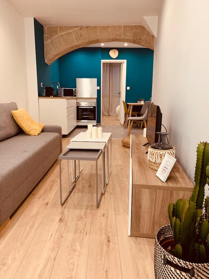 Béziers: appartement cosy en centre-ville