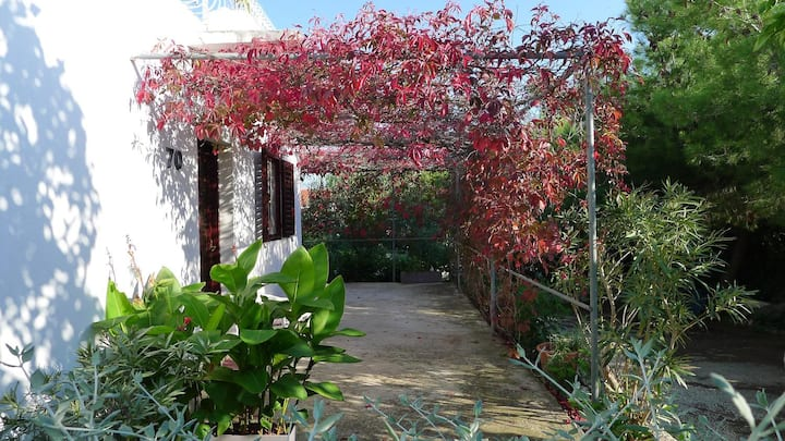 Two bedroom apartment near beach Sevid, Trogir (A-14337-a)