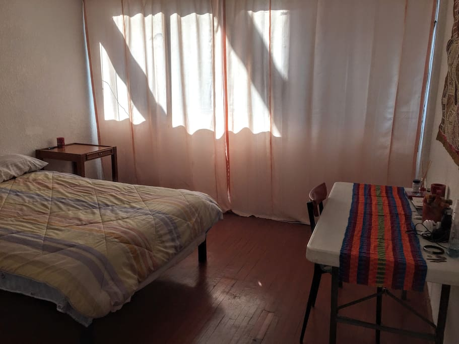 Beautiful room with the afternoon sun !