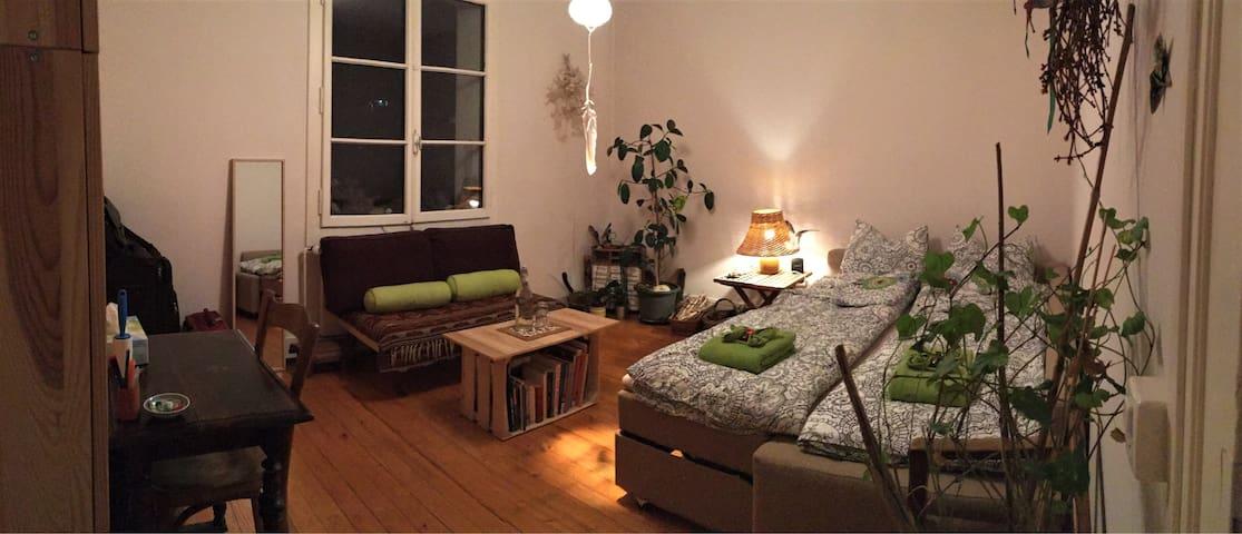 Chambre calme, relax, avec jardin, 15min du centre - Genebra - Casa