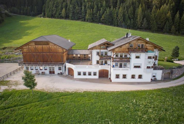 Amazing Dolomites View - Radhof - Apartment Esche