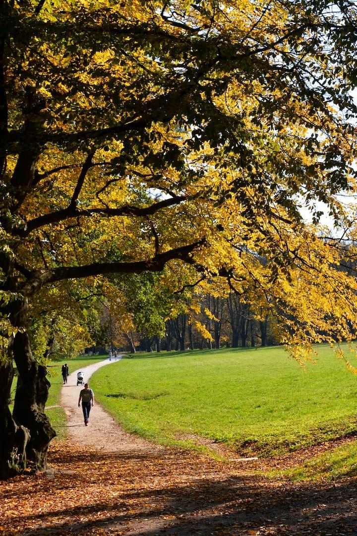 Walking trough the park