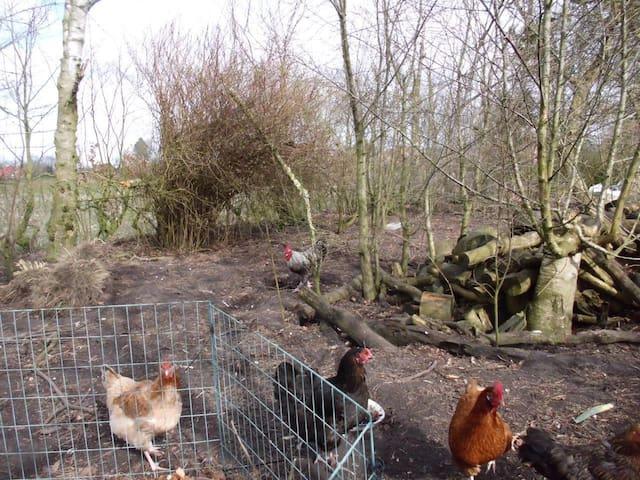 Amkes kleine Farm