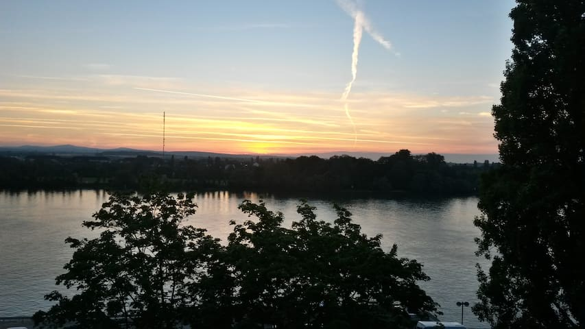 Bed and breakfast with a view on the Rhine