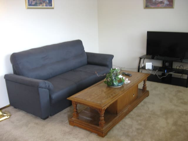 Cozy bright 1-bd. close to the airport - Des Moines - Wohnung