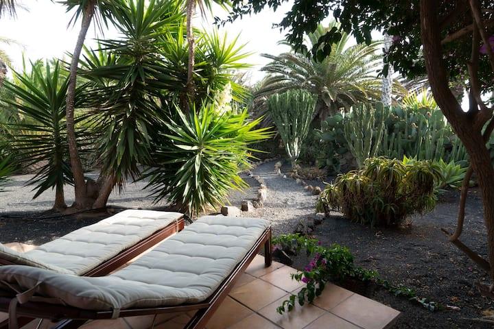 Casa Panama, in der Finca Mimosa