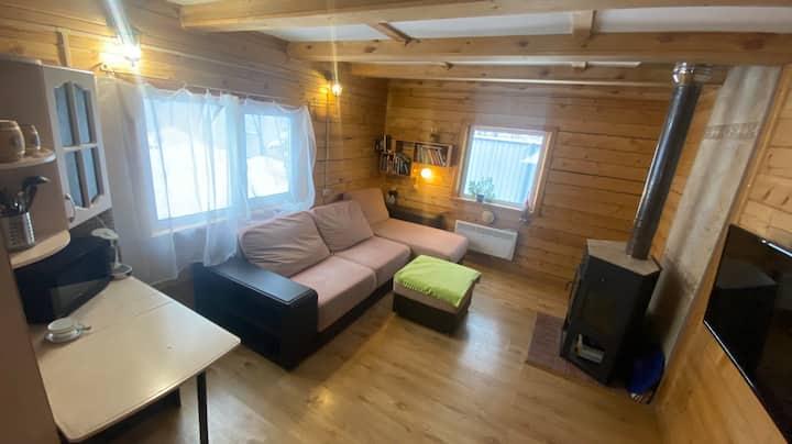 Уютный дом в лесной зоне