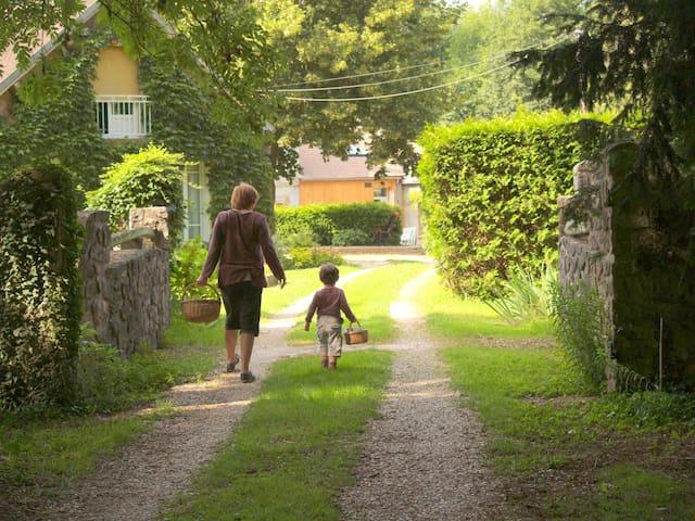 Maison rénovée et chaleureuse, au calme - Nailly - Přírodní / eko chata