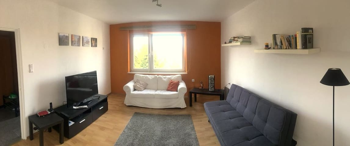 Very comfortable apartment in Mainz